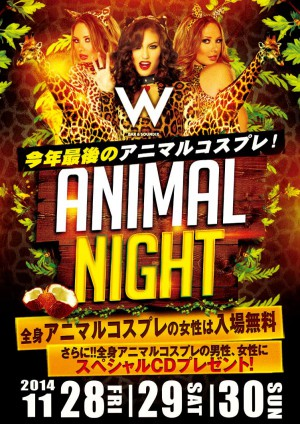 Animal Night